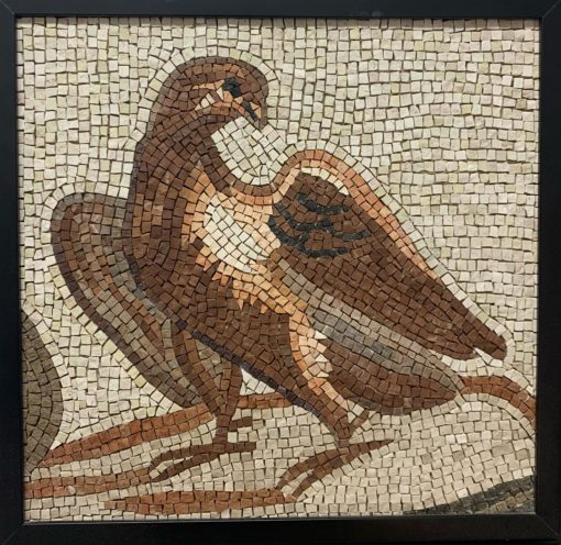 Aquila romana